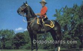 cmp001071 - Black Watch, Royal Canadian Mounted Police, Old Vintage Antique Postcard Post Card