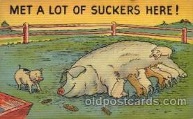 com001010 - Comic, Comedy, Comical Postcard Post Card