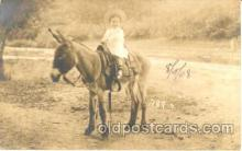 cop001010 - Child, Children on Pony, Donkey Postcard Post Card