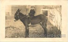 cop001011 - Child, Children on Pony, Donkey Postcard Post Card