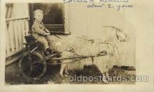 cop001015 - Real Photo child, children on goat Postcard Post Card