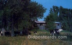 cou100380 - North Ferrisburg, VT USA Covered Bridge Postcard Post Card Old Vintage Antique