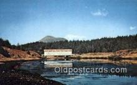 cou100416 - Afognak Island, Alaska Covered Bridge Postcard Post Card Old Vintage Antique