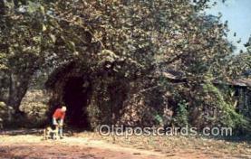 cou100428 - Cromer's Mill, Carnesville, GA USA Covered Bridge Postcard Post Card Old Vintage Antique