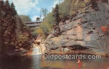 cou100766 - Covered Bridge Vintage Postcard