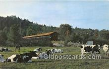 cou100771 - Covered Bridge Vintage Postcard