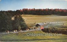 cou100968 - Covered Bridge Vintage Postcard