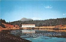 cou101075 - Covered Bridge Vintage Postcard