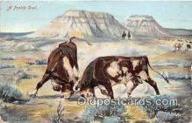 Prairie Duel