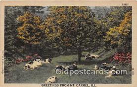 cow000030 - Mt Carmel, Illinois, USA Postcard Post Card