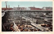 cow000034 - Stock Yards Chicago, IL, USA Postcard Post Card