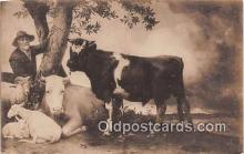 cow000035 - Paulus Potter  Postcard Post Card