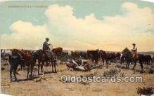 cow000039 - Branding Cattle Park View Postcard Post Card