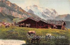 cow000104 - Alpenlandschaft und Jungfrau  Postcard Post Card