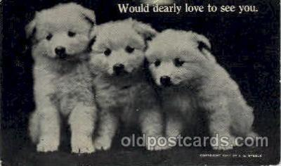 dog100230 - Dog, Dogs, Postcard Post Card