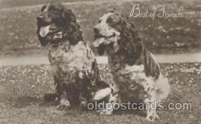 dog100373 - Dog, Dogs Postcard Post Card