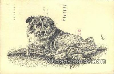 dog100672 - Collie Dog Post Card Postcard Old Vintage Antique