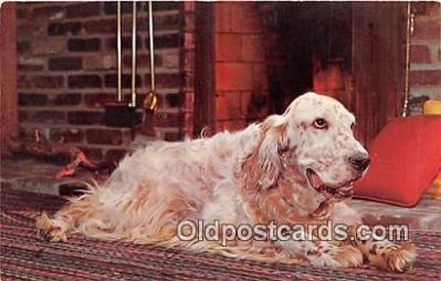 dog200005 - English Setter by the Fireside Photo by Free Lance Photographers Guild, Inc Postcard Post Card