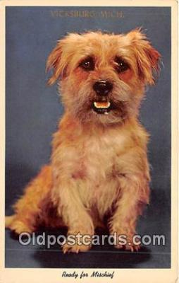 dog200303 - Vicksburg, Michigan, USA Postcard Post Card