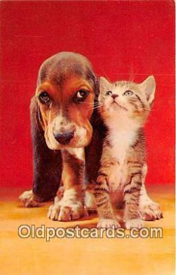 dog200312 - Postcard Post Card