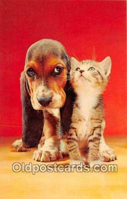 dog200326 - Postcard Post Card