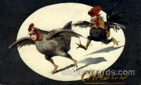 dan001003 - Dressed Rooster Postcard Post Card