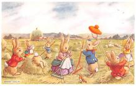 dan002375 - Dressed Animals Post Card