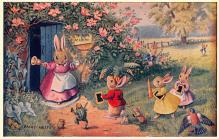 dan002389 - Dressed Animals Post Card