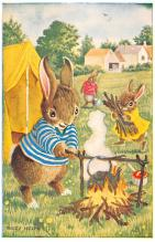 dan002408 - Dressed Animals Post Card