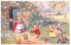 dan002414 - Dressed Animals Post Card