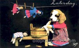 dan004046 - Non Postcard Backing, Dresses Dog, Dogs, Postcard Post Card