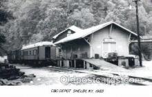 dep001709 - C and O Depot, Shelby, KY, Kentucky, USA Kodak Real Photo Paper Train Railroad Station Depot Post Card Post Card