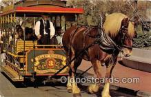 dis001124 - Horse Drawn Streetcar, Old Dobbin Walt Disney World, FL, USA Postcard Post Card
