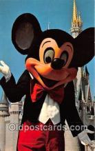 dis001155 - Mickey Mouse Walt Disney World, FL, USA Postcard Post Card