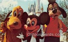 dis001173 - Mickey Mouse, Pluto, & Goofy Walt Disney World, FL, USA Postcard Post Card