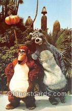 dis001200 - Baloo Walt Disney World, FL, USA Postcard Post Card