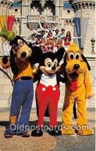 dis001201 - Goofy, Mickey & Pluto Walt Disney World, FL, USA Postcard Post Card