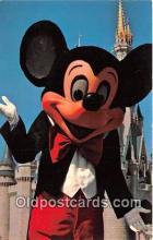 dis001229 - Mickey Mouse Walt Disney World, FL, USA Postcard Post Card