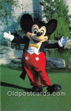 dis001238 - Mickey Mouse Walt Disney World, FL, USA Postcard Post Card