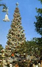 dis100005 - Christmas tree Disney Postcard Post Card