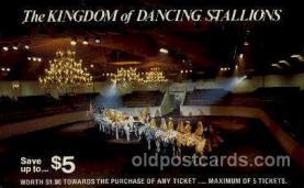 dnc001024 - Dancing stallions Dance, Dancing Postcard Post Card