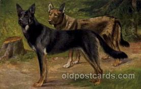 dog100022 - Dog, Dogs, Postcard Post Card