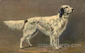 dog100023 - Dog, Dogs, Postcard Post Card