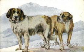 dog100025 - Dog, Dogs, Postcard Post Card