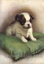 dog100046 - Dog, Dogs, Postcard Post Card