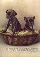 dog100048 - French BullDog, Dogs, Postcard Post Card