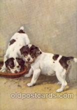 dog100049 - Smooth Fox Terrior Dog, Dogs, Postcard Post Card