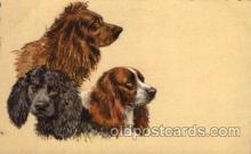 dog100064 - Dog, Dogs, Postcard Post Card