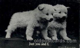 dog100085 - Dog, Dogs, Postcard Post Card