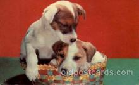 dog100088 - Dog, Dogs, Postcard Post Card